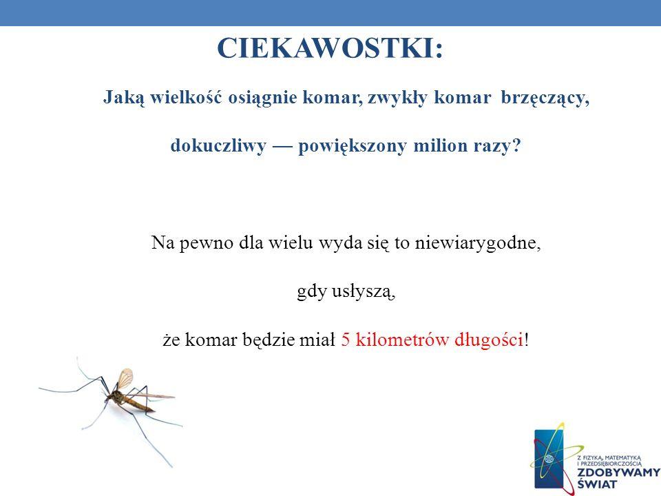 CIEKAWOSTKI: Jaką wielkość osiągnie komar, zwykły komar brzęczący,