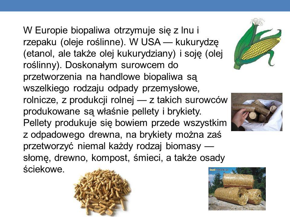 W Europie biopaliwa otrzymuje się z lnu i rzepaku (oleje roślinne)