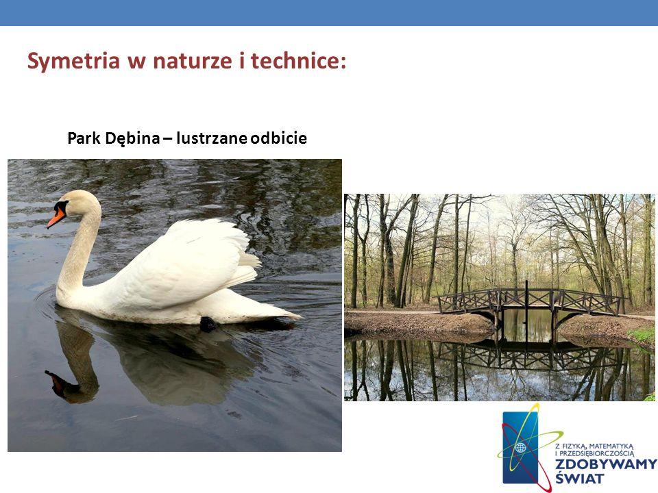Symetria w naturze i technice: