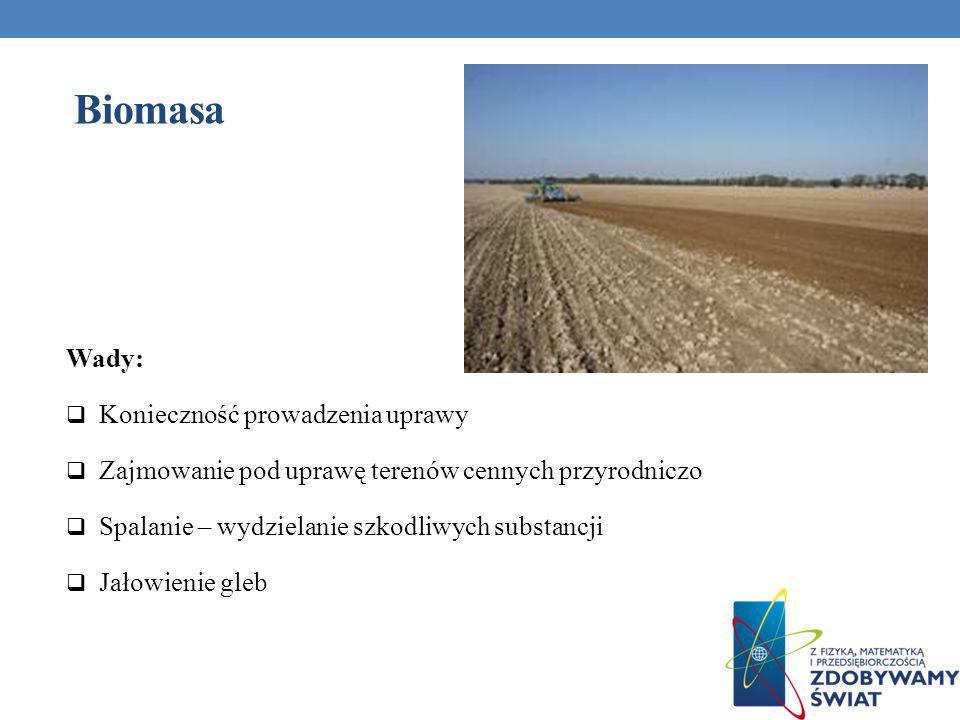 Biomasa Wady: Konieczność prowadzenia uprawy