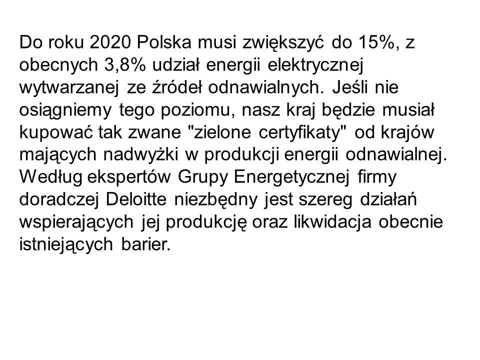 Do roku 2020 Polska musi zwiększyć do 15%, z obecnych 3,8% udział energii elektrycznej wytwarzanej ze źródeł odnawialnych.
