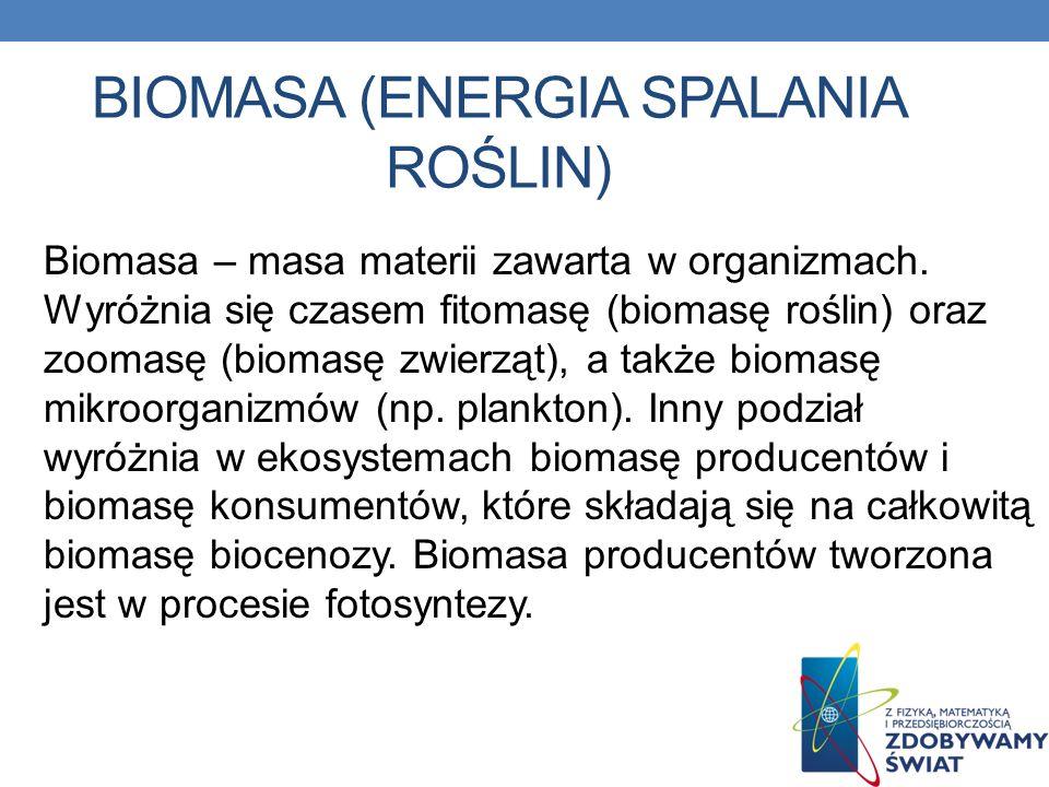 biomasa (energia spalania roślin)