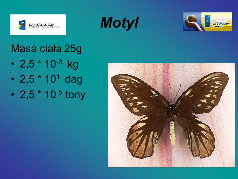 Motyl Masa ciała 25g 2,5 * 10-3 kg 2,5 * 101 dag 2,5 * 10-5 tony