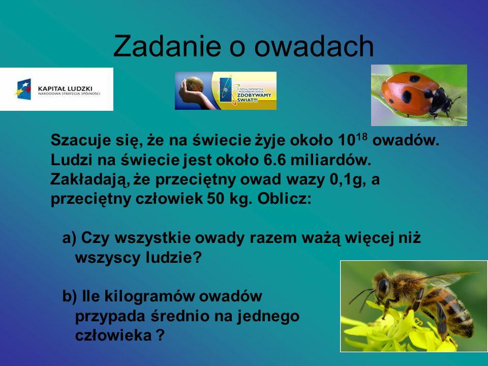 Zadanie o owadach