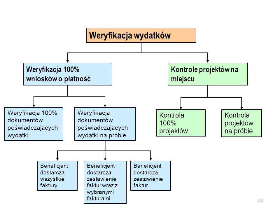 Kontrole IZ - weryfikacja wydatków