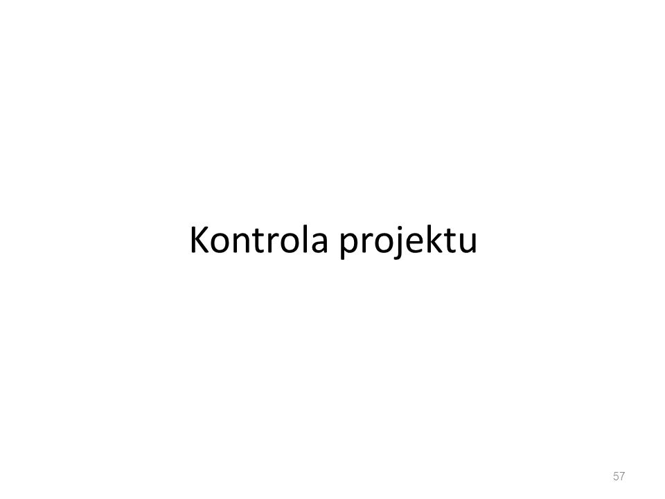 Kontrola projektu