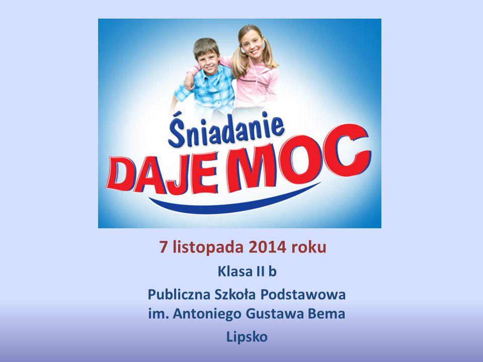 Publiczna Szkoła Podstawowa im. Antoniego Gustawa Bema