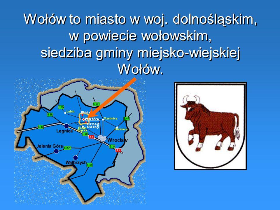 Wołów to miasto w woj. dolnośląskim, w powiecie wołowskim, siedziba gminy miejsko-wiejskiej Wołów.