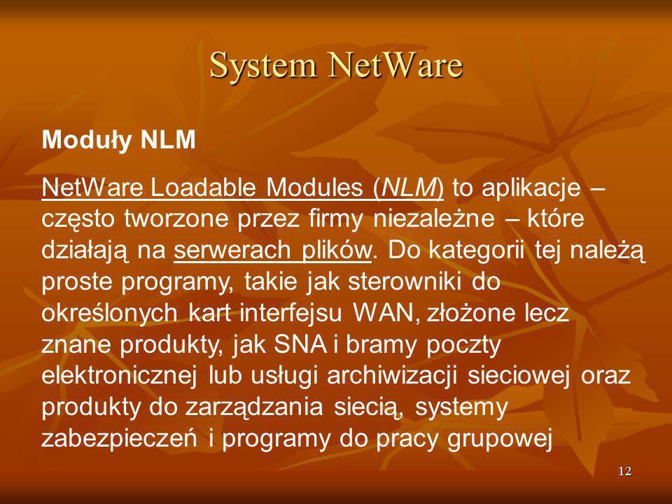 System NetWare Moduły NLM