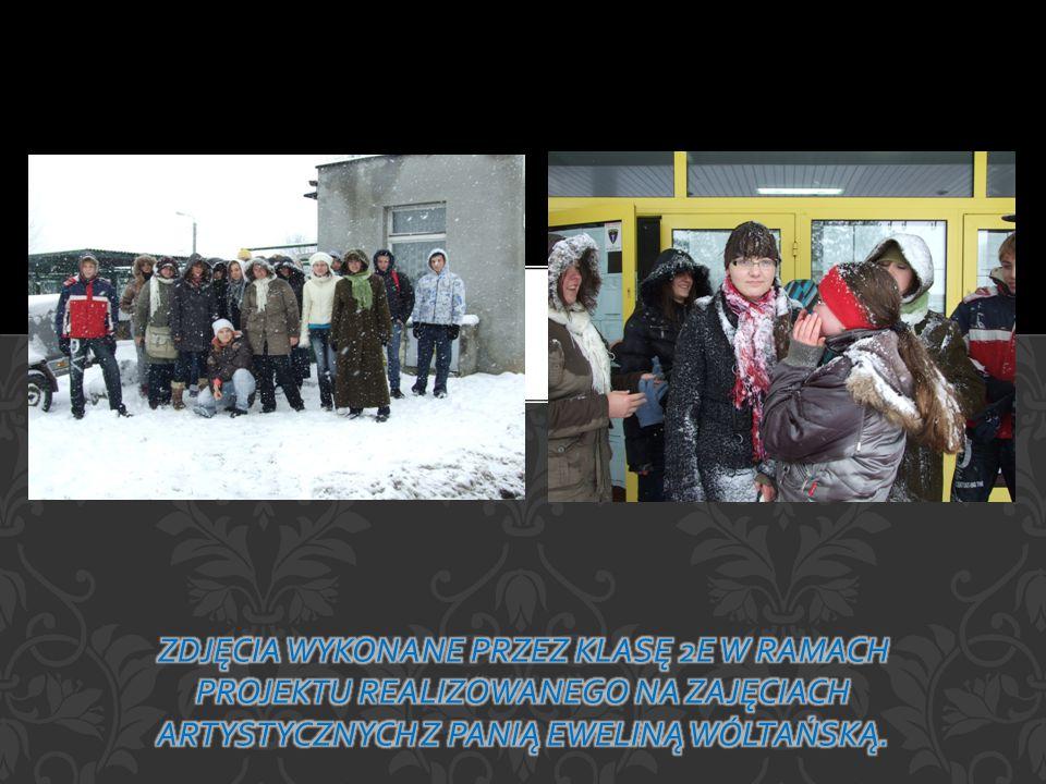 Zdjęcia wykonane przez klasę 2e w ramach projektu realizowanego na zajęciach artystycznych z Panią Eweliną Wóltańską.