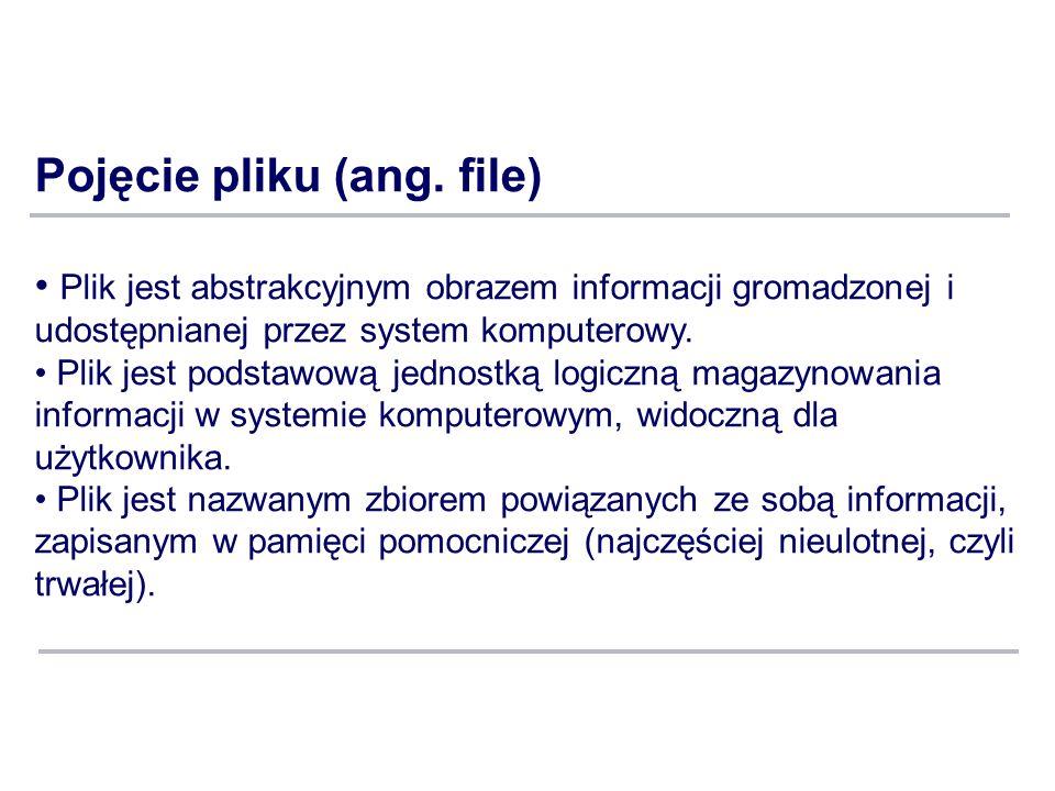 Pojęcie pliku (ang. file)