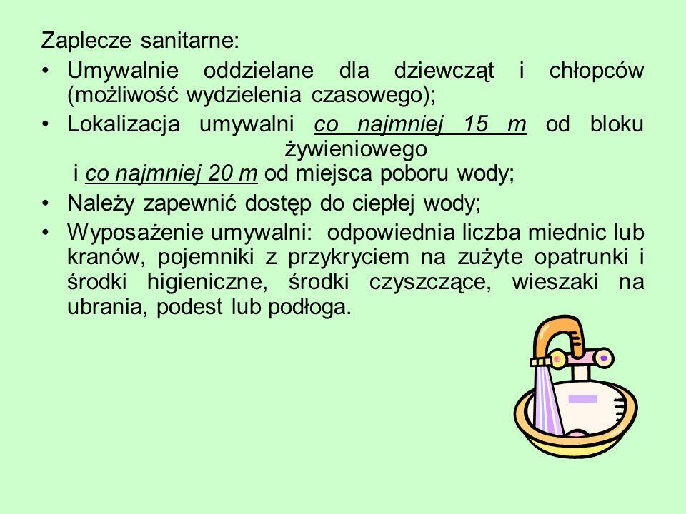 Zaplecze sanitarne: Umywalnie oddzielane dla dziewcząt i chłopców (możliwość wydzielenia czasowego);