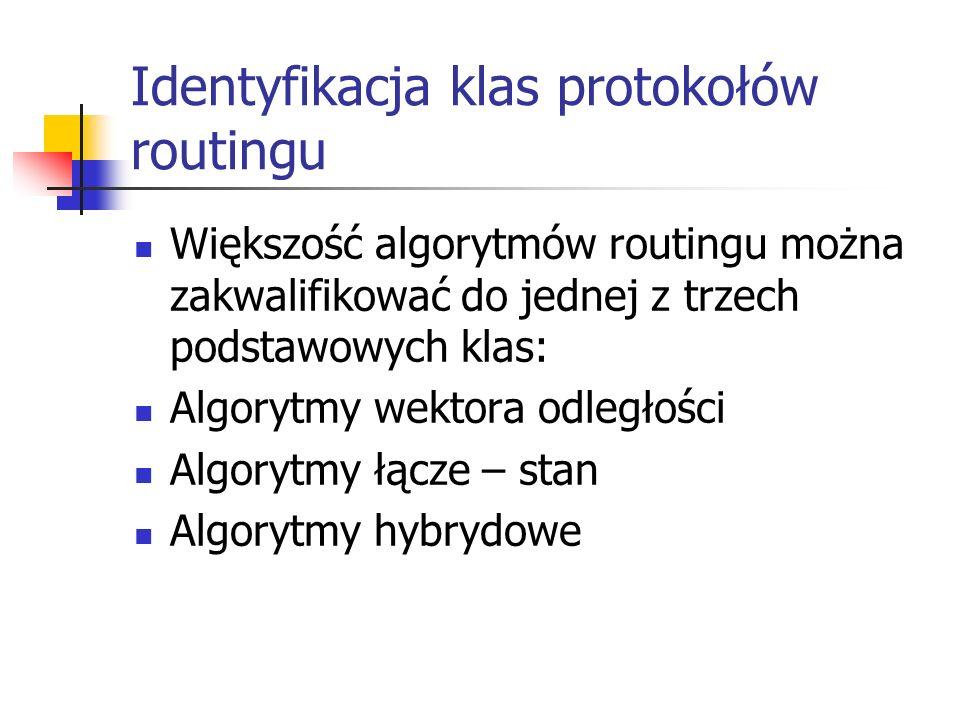 Identyfikacja klas protokołów routingu
