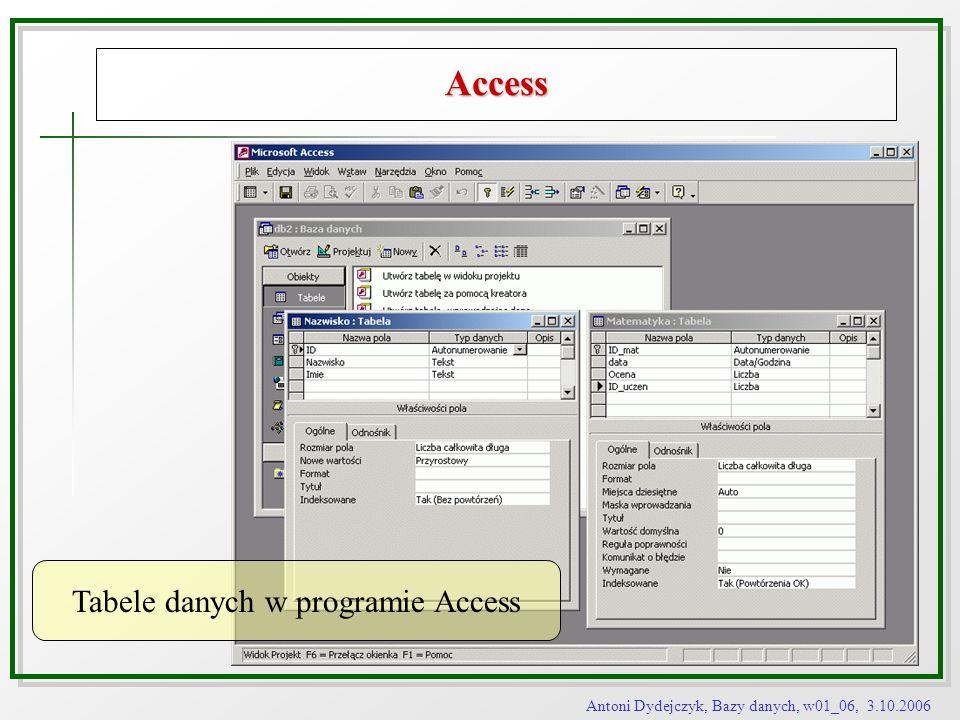 Tabele danych w programie Access