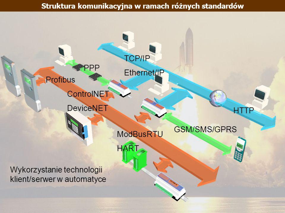 Struktura komunikacyjna w ramach różnych standardów