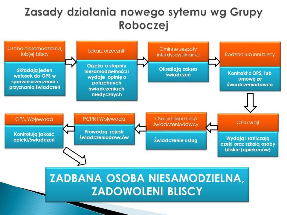 Zasady działania nowego sytemu wg Grupy Roboczej
