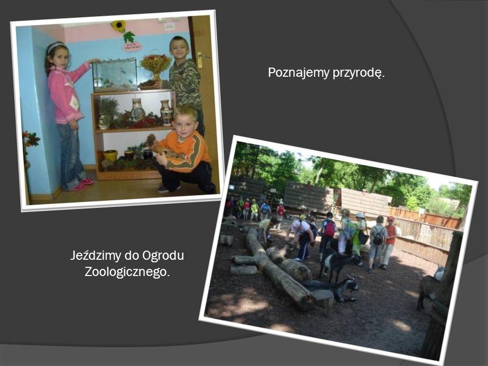 Jeździmy do Ogrodu Zoologicznego.