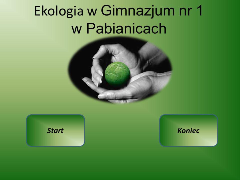 Ekologia w Gimnazjum nr 1 w Pabianicach