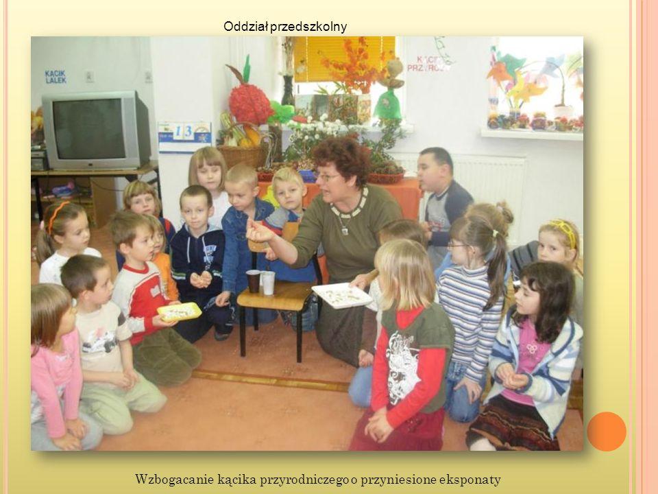 Oddział przedszkolny Wzbogacanie kącika przyrodniczego o przyniesione eksponaty
