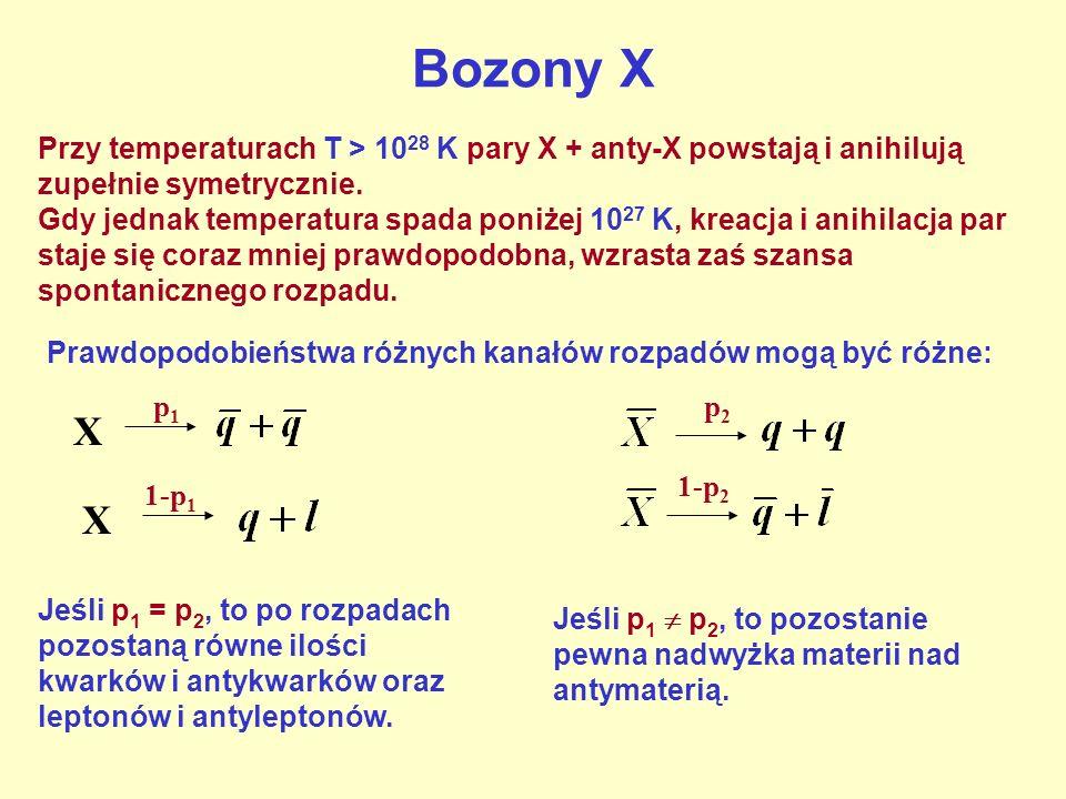 Bozony XPrzy temperaturach T > 1028 K pary X + anty-X powstają i anihilują zupełnie symetrycznie.