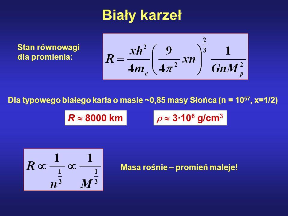 Biały karzeł R  8000 km   3·106 g/cm3 Stan równowagi dla promienia: