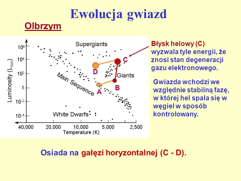 Ewolucja gwiazd Olbrzym Osiada na gałęzi horyzontalnej (C - D).