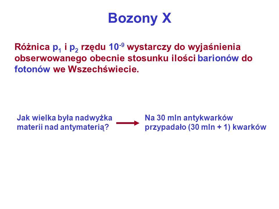 Bozony X Różnica p1 i p2 rzędu 10-9 wystarczy do wyjaśnienia obserwowanego obecnie stosunku ilości barionów do fotonów we Wszechświecie.