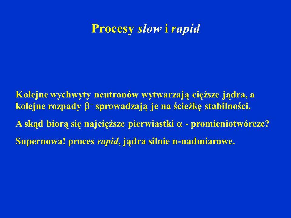 Procesy slow i rapid Kolejne wychwyty neutronów wytwarzają cięższe jądra, a kolejne rozpady  sprowadzają je na ścieżkę stabilności.