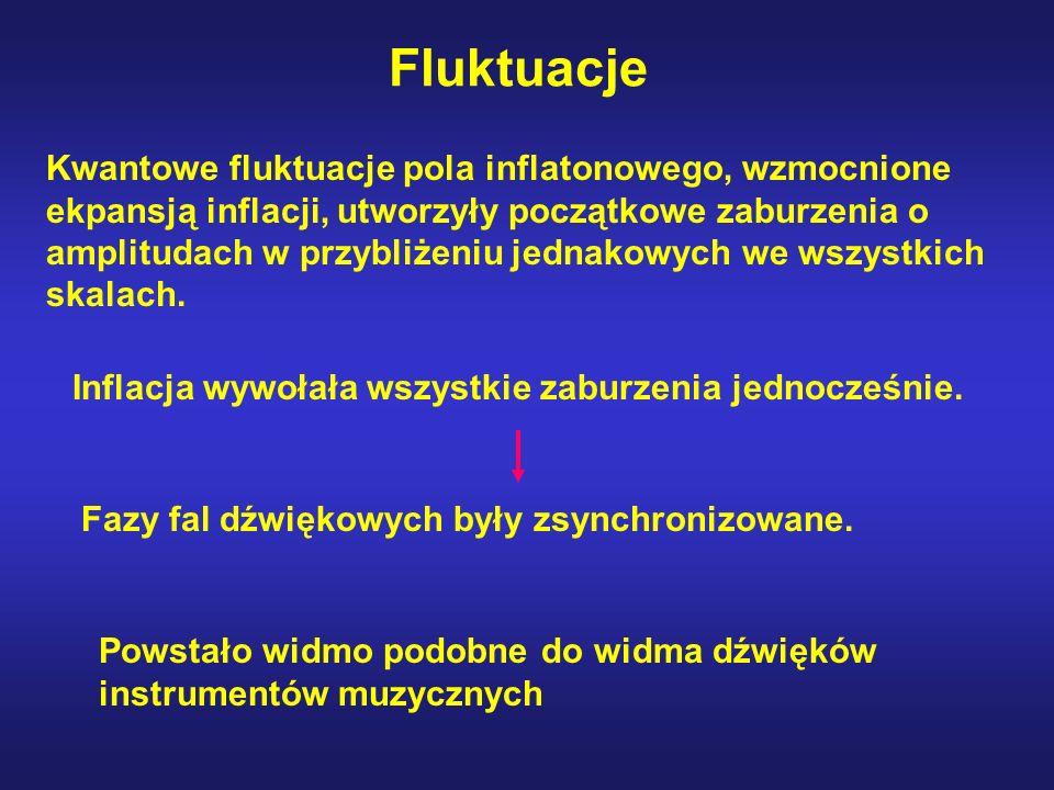 Fluktuacje