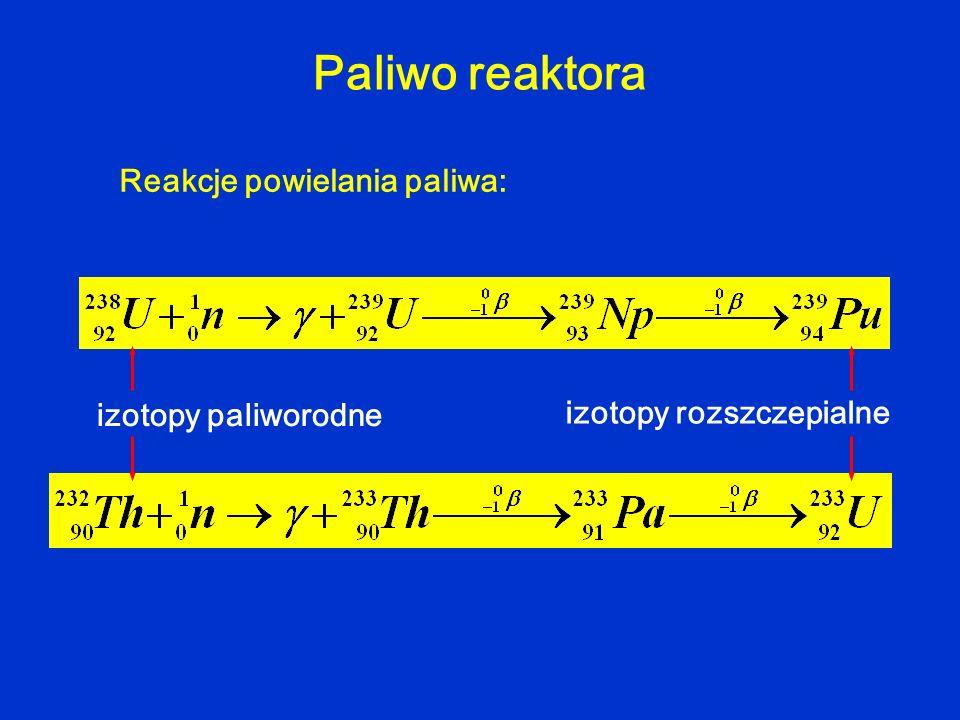 Paliwo reaktora Reakcje powielania paliwa: izotopy paliworodne