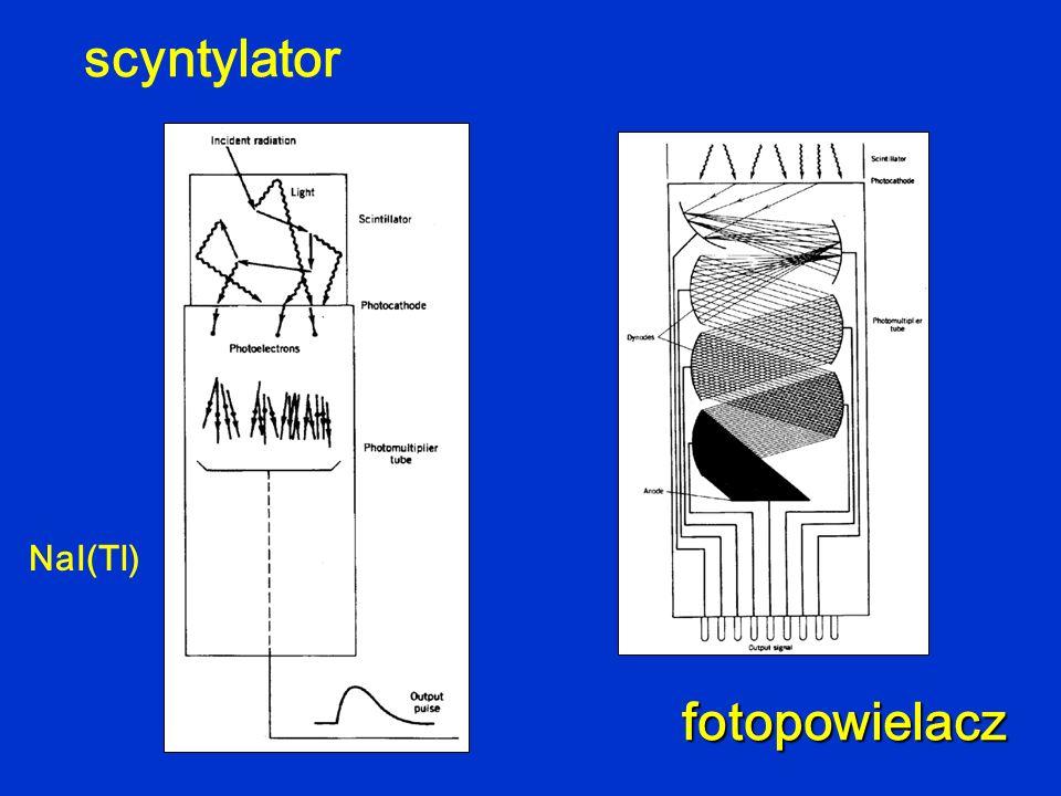 scyntylator fotopowielacz