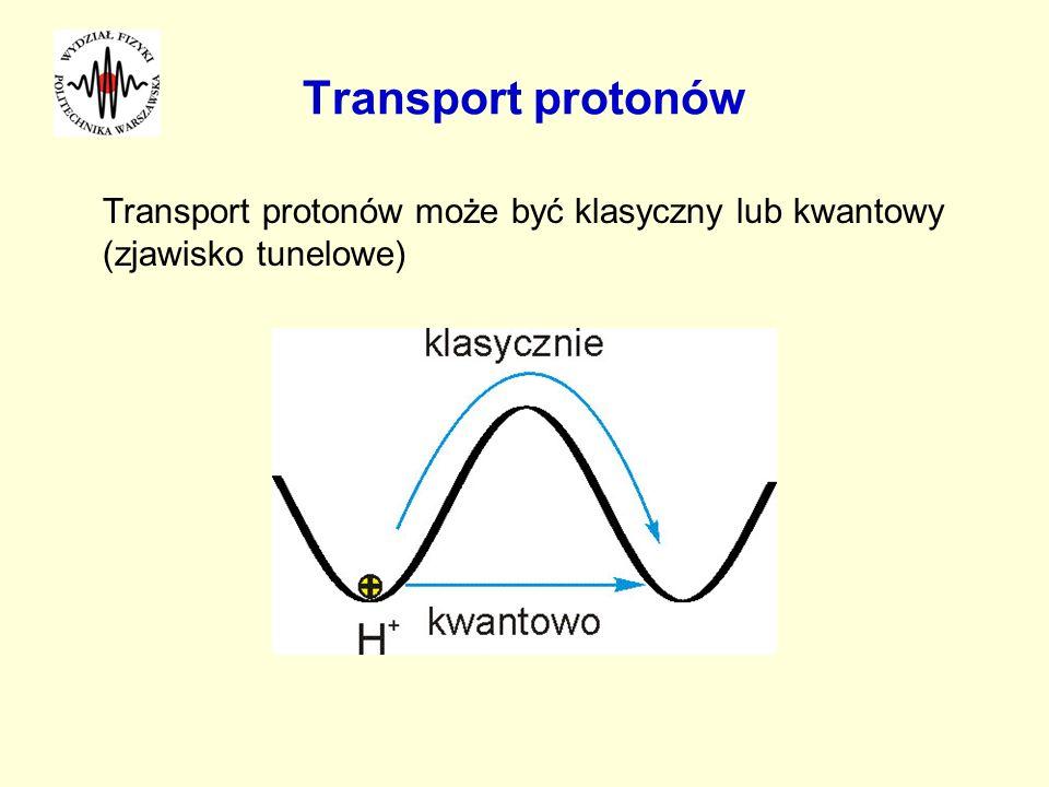 Transport protonów Transport protonów może być klasyczny lub kwantowy (zjawisko tunelowe)