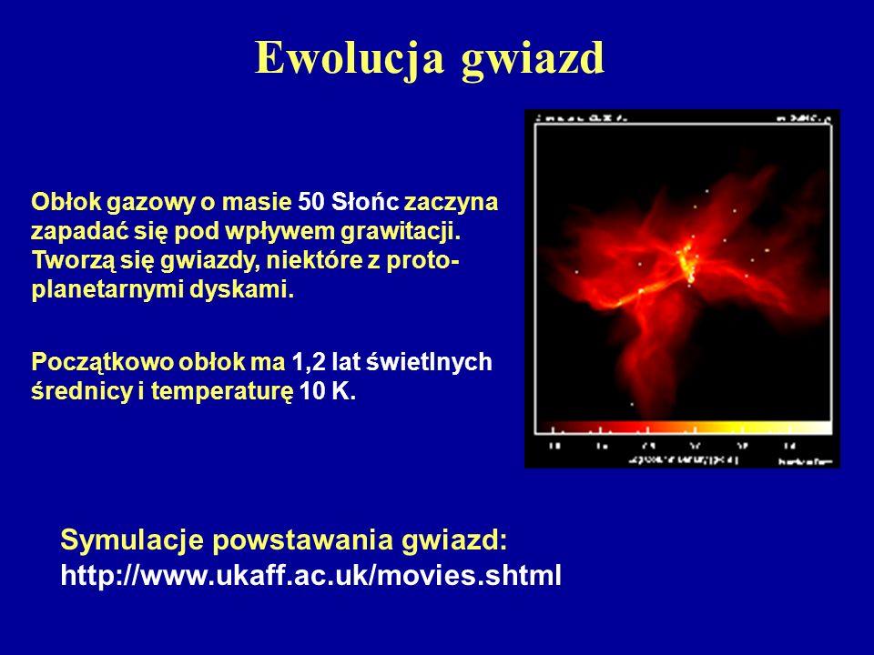 Ewolucja gwiazd Obłok gazowy o masie 50 Słońc zaczyna zapadać się pod wpływem grawitacji. Tworzą się gwiazdy, niektóre z proto-planetarnymi dyskami.