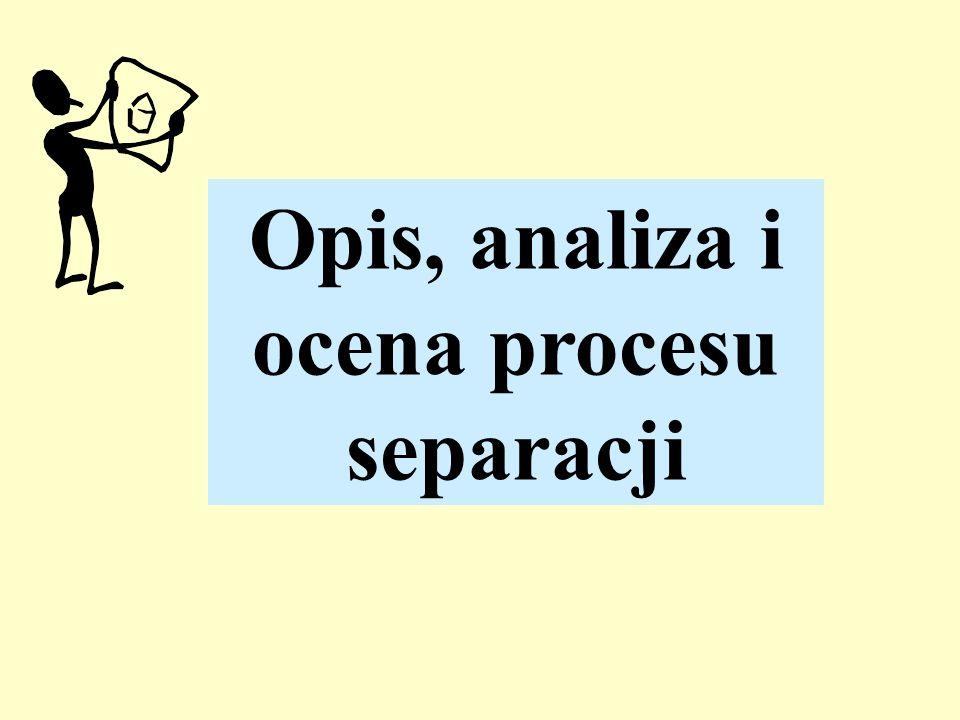 Opis, analiza i ocena procesu
