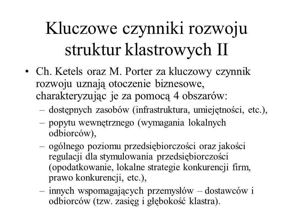 Kluczowe czynniki rozwoju struktur klastrowych II