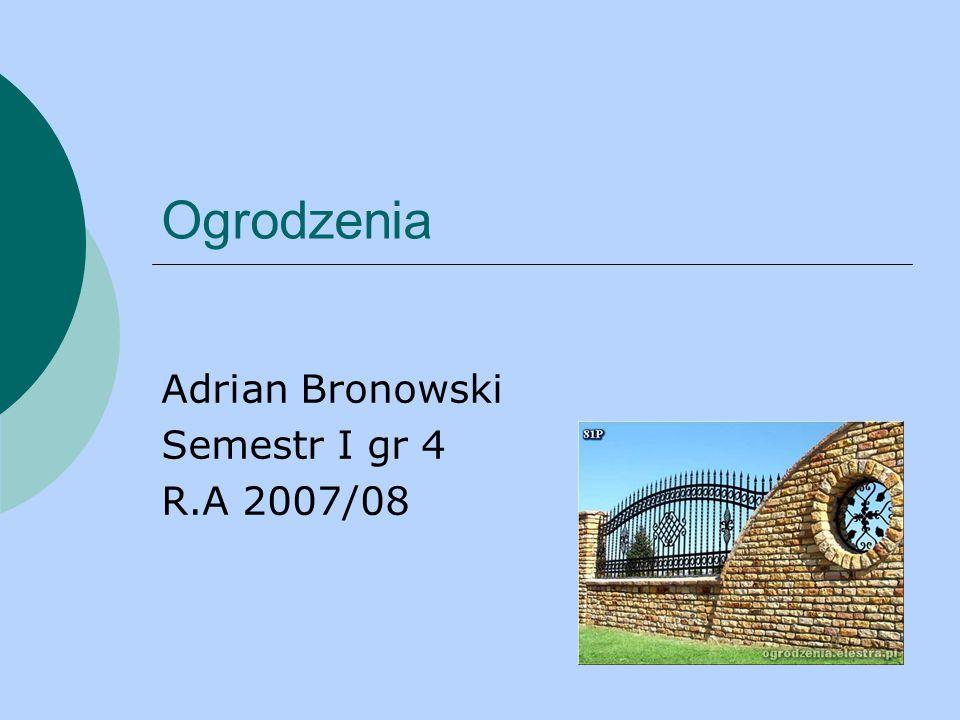 Adrian Bronowski Semestr I gr 4 R.A 2007/08