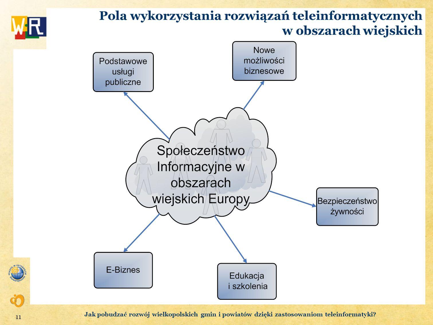 Pola wykorzystania rozwiązań teleinformatycznych w obszarach wiejskich