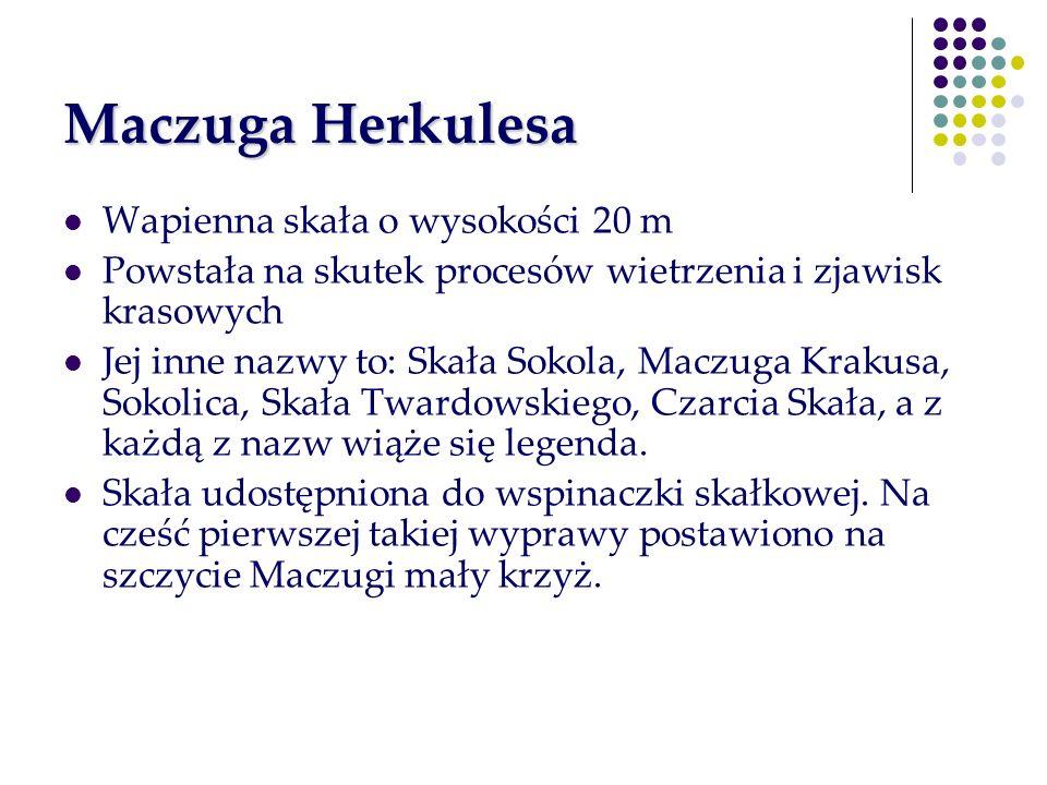 Maczuga Herkulesa Wapienna skała o wysokości 20 m