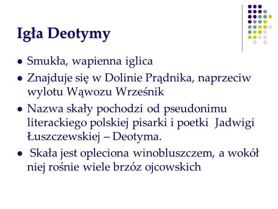 Igła Deotymy Smukła, wapienna iglica