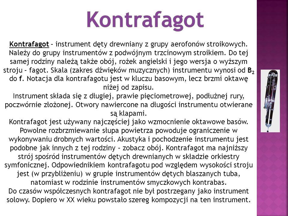 Kontrafagot – instrument dęty drewniany z grupy aerofonów stroikowych.