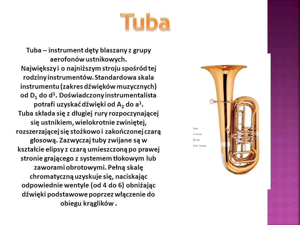 Tuba – instrument dęty blaszany z grupy aerofonów ustnikowych.