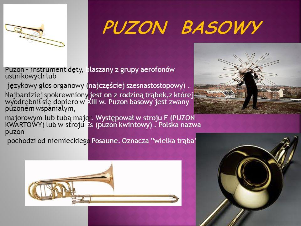 Puzon basowy Puzon – instrument dęty, blaszany z grupy aerofonów ustnikowych lub. językowy głos organowy (najczęściej szesnastostopowy) .