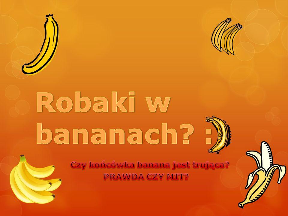 Czy końcówka banana jest trująca PRAWDA CZY MIT