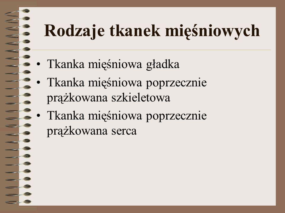 Rodzaje tkanek mięśniowych