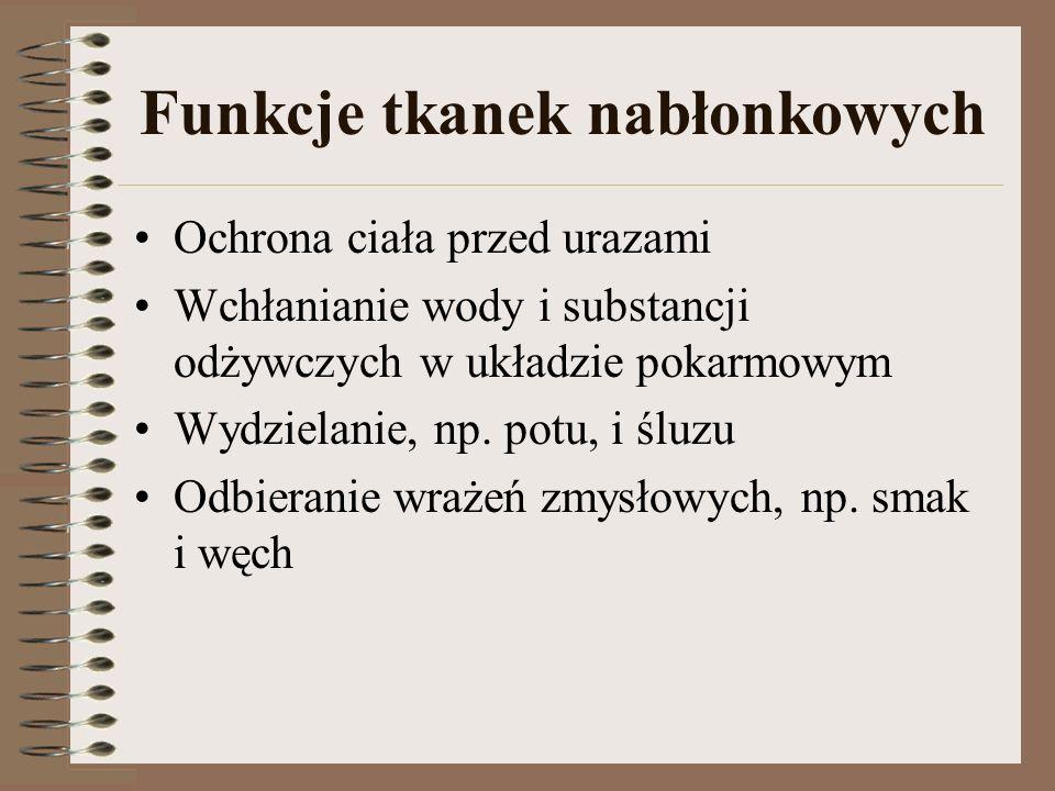 Funkcje tkanek nabłonkowych