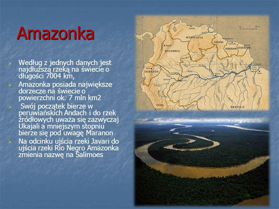 Amazonka Według z jednych danych jest najdłuższą rzeką na świecie o długości 7004 km,