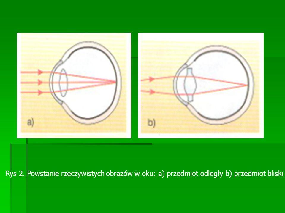 Rys 2. Powstanie rzeczywistych obrazów w oku: a) przedmiot odległy b) przedmiot bliski