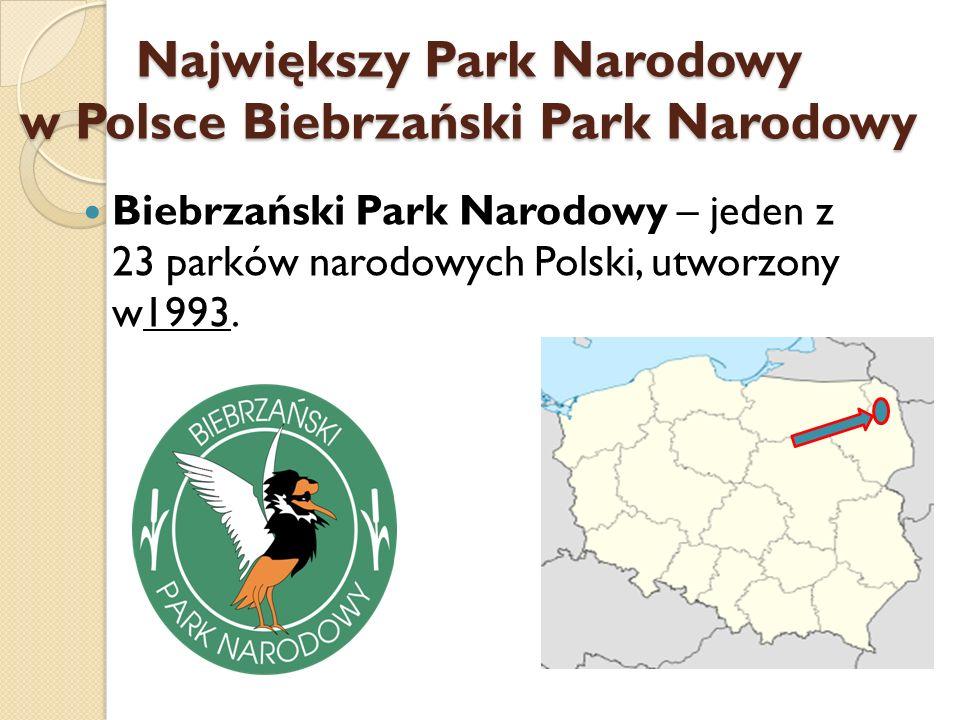 Największy Park Narodowy w Polsce Biebrzański Park Narodowy