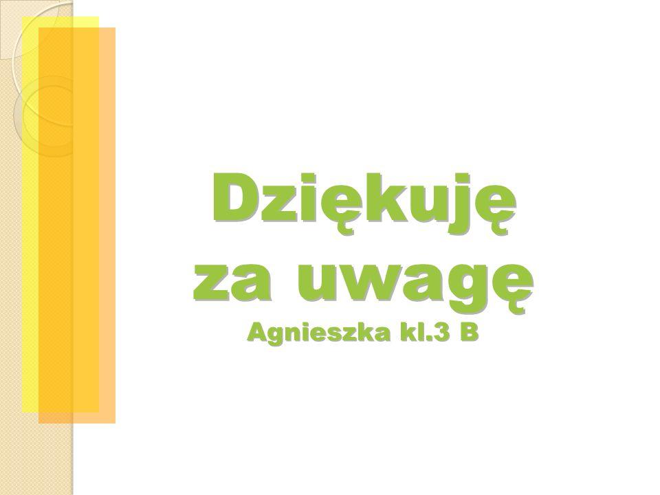Dziękuję za uwagę Agnieszka kl.3 B