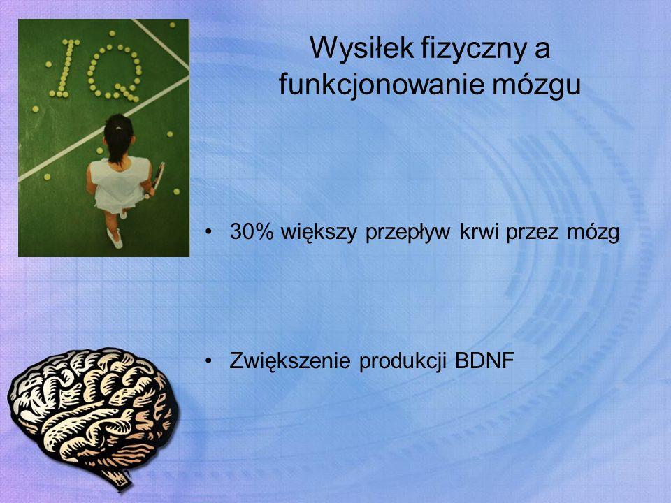 Wysiłek fizyczny a funkcjonowanie mózgu